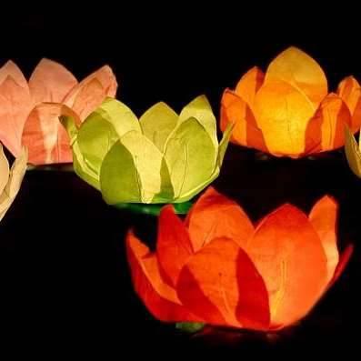 Wasserlaterne Rosen